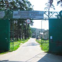 Сосновоборск, больница и поликлиника, Сосновоборск