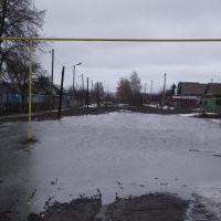 Половодье, ул.Луначарского, Тамала