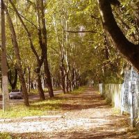 Осень в городе, Березники