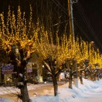 2011-12-28 - 029  (D5100) (Berezniki) (TsumOnu), Березники