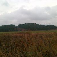 Гора Мыщелка, Большая Соснова