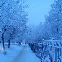 зимние прогулки, Верещагино