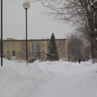 Новогодняя ёлка на центральной площади города, Верещагино