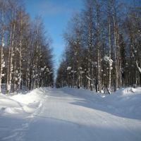 Гремячинск, городской парк зимой, Гремячинск