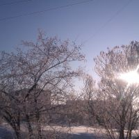Мороз и солнце, Добрянка