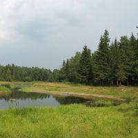 Речка Сеполь под Кочево, Кочево