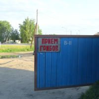 На шиномонтажке ещё и грибами балуются, Красновишерск
