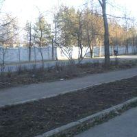 Скоро тут будет много зелени, Краснокамск