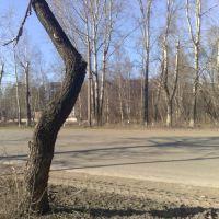 Дорога, Краснокамск