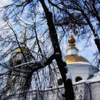 Купола Никольской церкови в Кудымкаре., Кудымкар