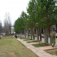 Аллея в память героям войны, Кудымкар