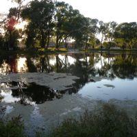 Куединский пруд, Куеда