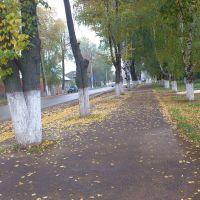 Куеда, ул. Гагарина, Куеда