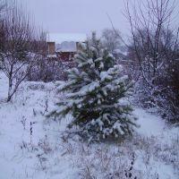 Ну вот и зима, Лысьва