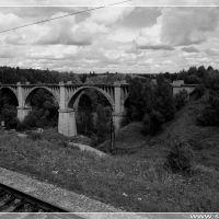 E3270027_Zabroshenny_viaduk_u_Bartyma__Abandoned_Viaduct_at_Bartym.jpg, Октябрьский