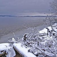 First snow, Оса