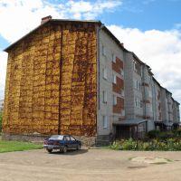 Wall http://starcom68.livejournal.com/913116.html, Оса