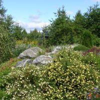 в ботаническом саду, Соликамск