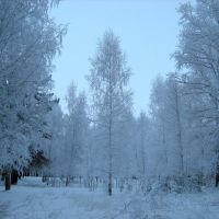 Парк в районе Речного порта, Чайковский
