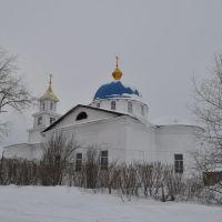 Воскресенская церковь в Частых, Частые
