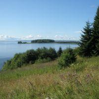 Вид на Степковский остров, Чернореченский
