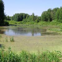 Рукотворное озеро на Степковке, Чернореченский