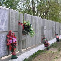 Мемориал, Чернушка
