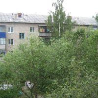 Пермские берёзы, Чернушка