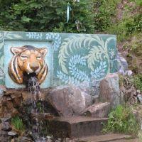 Анучино — село в центре Приморского края у тигра, Анучино