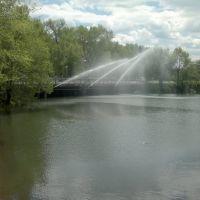 Фонтан в парке, Арсеньев