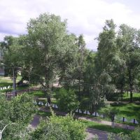Шахин Александр: фото - Вид на парк, Арсеньев