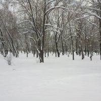 Парк, ДК Аскольд, Арсеньев