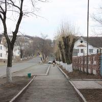 Улица Ленина, Большой Камень