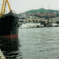 Fishingman in the port of Vladivostok, Владивосток
