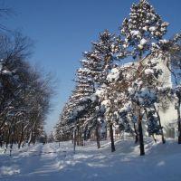 Санаторий в снегу, Горные Ключи