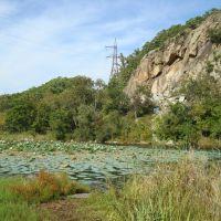 озеро с кувшинками возле Глазовки, Горный