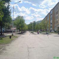 Бульвар П. Осипенко, Дальнегорск