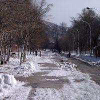 Бульвар П.Осипенко(8.03.11), Дальнегорск