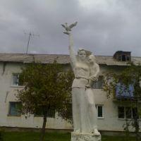 Памятник с Голубем, Дальнегорск