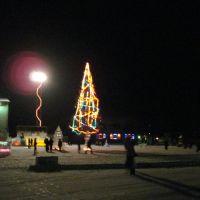 Новогодняя елка 2009, Дальнереченск