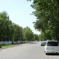 Улица Советская, Дальнереченск
