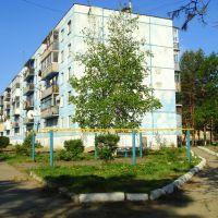Синяя пятиэтажка, Дальнереченск