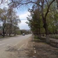 От школы №2 в центр, Дальнереченск
