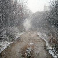 2010.10.17 Первый снег, Кировский