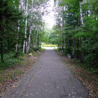 公园小路, Партизанск