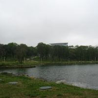Территория кампуса ДВФУ, озеро, Русский