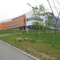 Спортивный комплекс, кампус ДВФУ, Русский