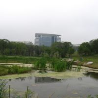 Территория кампуса ДВФУ, Русский