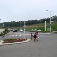Въезд на территорию кампуса ДВФУ, Русский