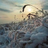Зима, Славянка